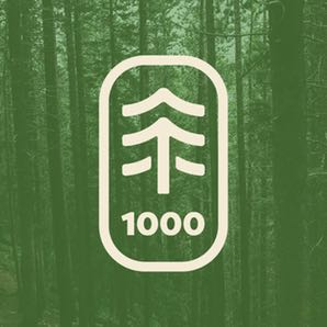 1000 Trees for $100
